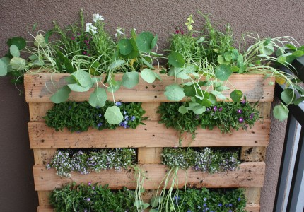 diy jardin vertical