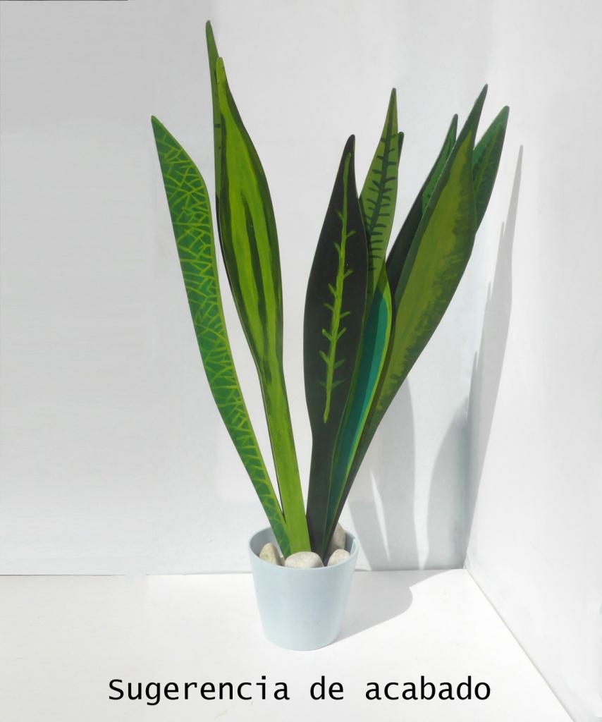 plantas medicinales diy